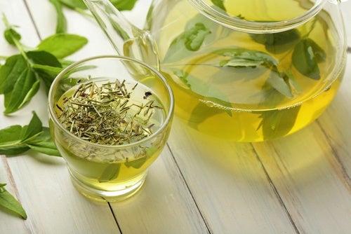 ¿Conoces todas las propiedades del té verde?